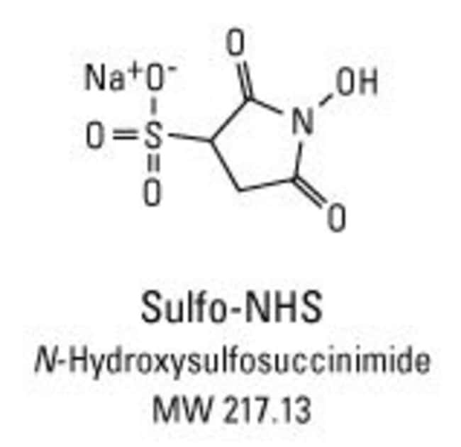Chemical structure of Sulfo-NHS