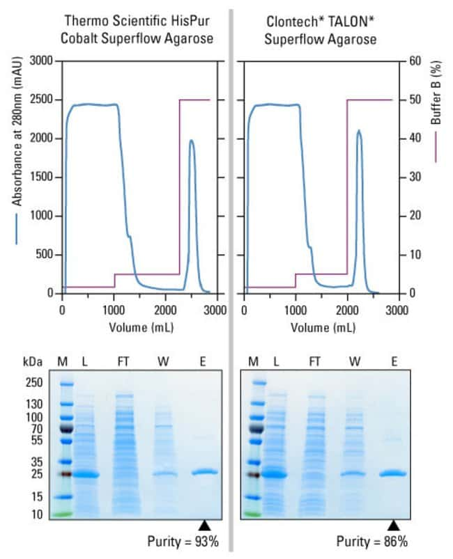 100g of biomass containing overexpressed 6xHis-GFP was lysed with 1L of lysis buffer supplemented with Halt Protease Inhibitor (Part No. 78439) and loaded onto an equilibrated 200mL column (50mm x ~10