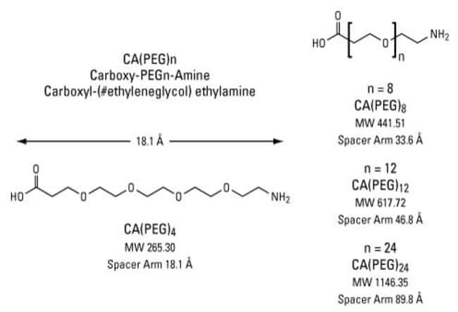 Chemical structure of Carboxy-PEG-Amine compounds, CA(PEG)n