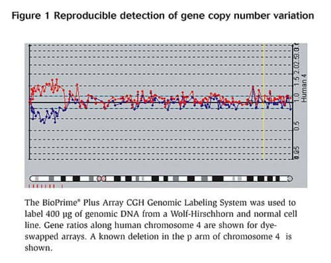 Figure 1 - Reproducible detection of gene copy number variation