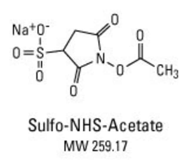 Structure and properties of sulfo-NHS-acetate: