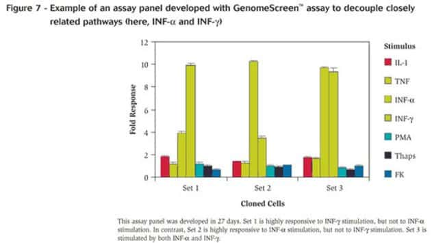 Figure 7 - Example of an assay panel developed with GenomeScreen™ assay to decouple closely related pathways (here, INF-α and INF-γ)