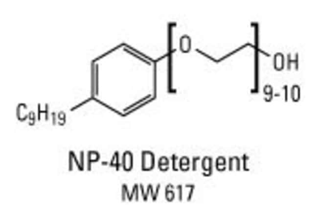 Chemical structure of NP-40 detergent