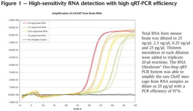 Figure 1 - High-sensitivity RNA detection with high qRT-PCR efficiency