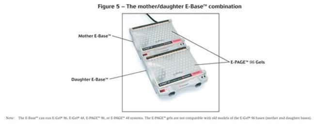 Figure 5 - The mother/daughter E-Base™ combination