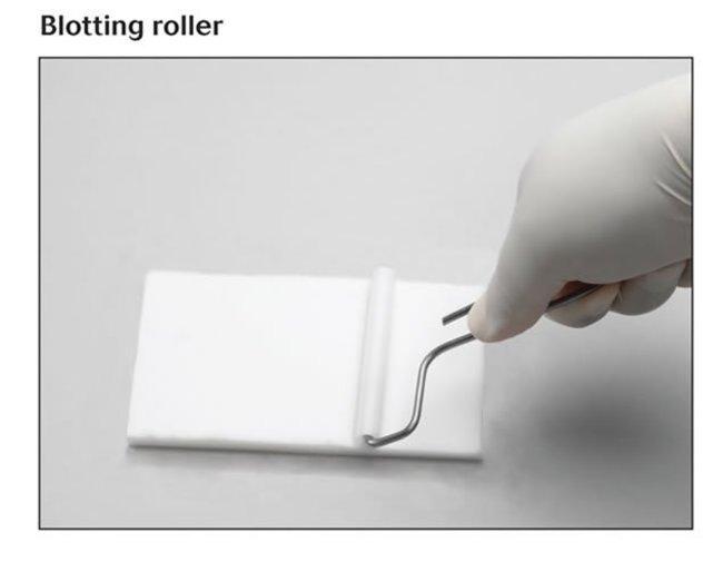 Blotting roller