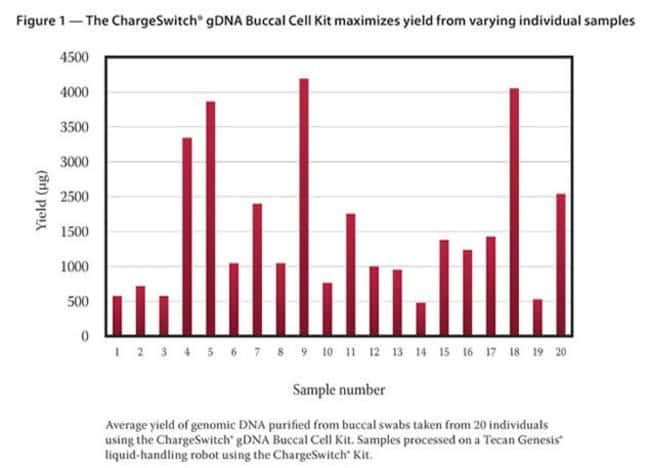 Figure 1 - The ChargeSwitch® gDNA Buccal Cell Kit maximizes yield from varying individual samples