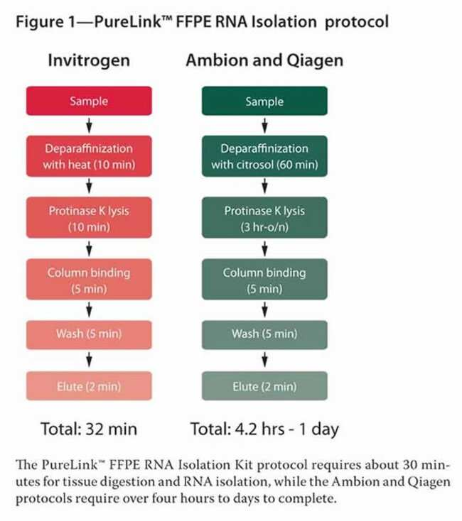 Figure 1 - PureLink™ FFPE RNA Isolation protocol