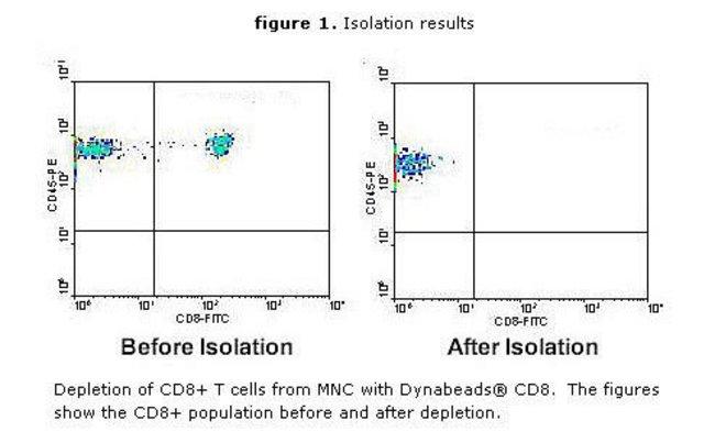 CD8+ population before and after depletion.