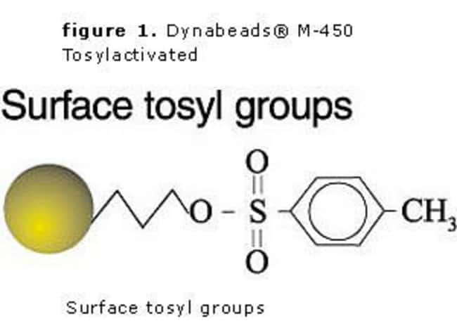 Dynabeads® M-450 Tosylactivated