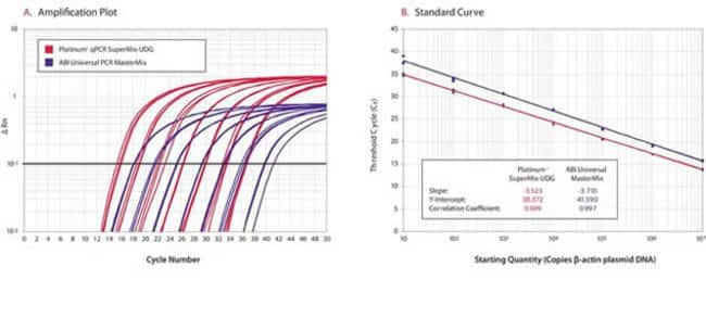 Amplification plot and standard curve