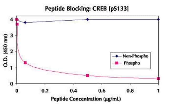 The specificity of this assay for phosphorylated CREB [pS133] was confirmed by peptide competition. The data show that the phosphopeptide containing the phosphorylated serine 133 blocks the ELISA signal.