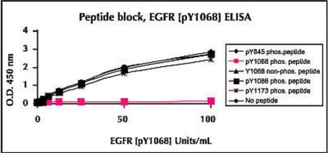Specificity is confirmed by peptide competition. Data show that only the blocking peptide corresponding to the region surrounding tyrosine 1068, containing thephospho-tyrosine, could block the ELISA signal. The same sequence containing non-phosphorylated