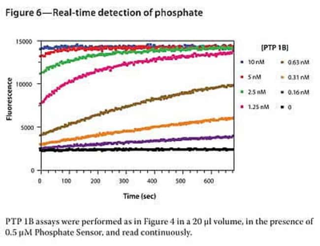Figure 6 - Real-time detection of phosphate