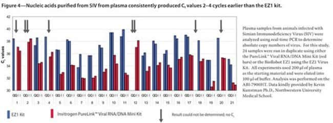Nucleic acids purified from SIV from plasma consistently produced Ct values 2–4 cycles earlier than the EZ1 kit.
