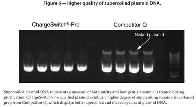 Figure 6—Higher quality of supercoiled plasmid DNA.