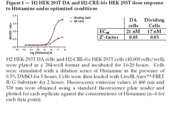 Figure 1 - H2 HEK 293T DA and H2-CRE-bla HEK 293T dose response to Histamine under optimized conditions