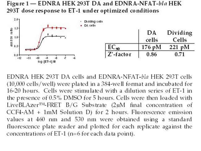 Figure 1 - EDNRA HEK 293T DA and EDNRA-NFAT-bla HEK 293T dose response to ET-1 under optimized conditions