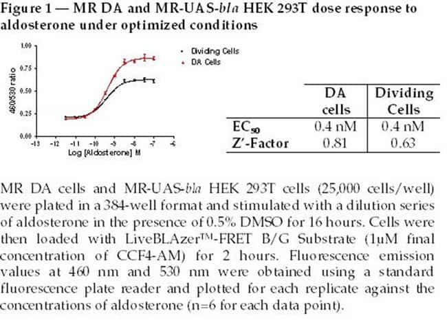 Figure 1  -  MR DA and MR-UAS-bla HEK 293T dose response to aldosterone under optimized conditions