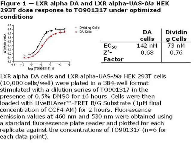 Figure 1  -  LXR alpha DA and LXR alpha-UAS-bla HEK 293T dose response to TO901317 under optimized conditions