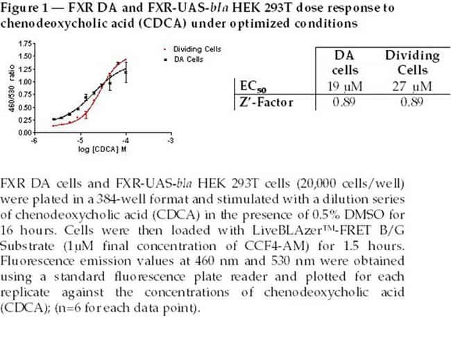 Figure 1  -  FXR DA and FXR-UAS-bla HEK 293T dose response to chenodeoxycholic (CDCA) under optimized conditions