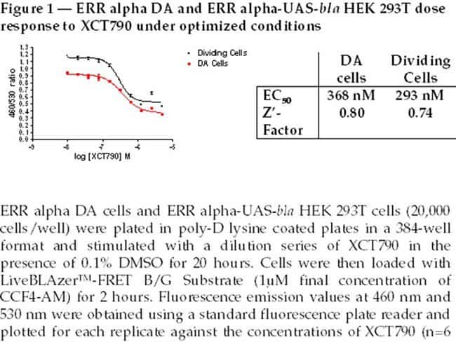 Figure 1  -  ERR alpha DA and ERR alpha-UAS-bla HEK 293T dose response to XCT790 under optimized conditions