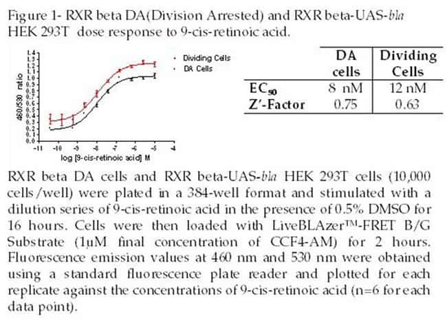 Figure 1- RXR beta DA (Division Arrested) and RXR beta-UAS-bla HEK 293T dose response to 9-cis-retinoic acid.