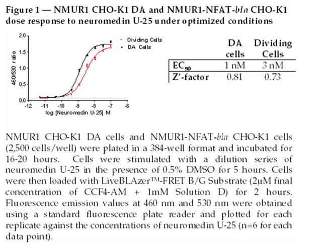 Figure 1- NMUR1 CHO-K1 DA (Division Arrested) and NMUR1-NFAT-bla CHO-K1 cells dose response to neuromed in U-25 under optimized conditions.