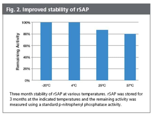 Fig. 2, Improved Stability of rSAP