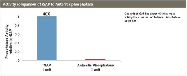 Fig. 3, Activity Comparison of rSAP to Antartic phosphatase