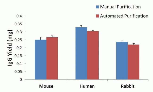 Manual vs. automated purification methods