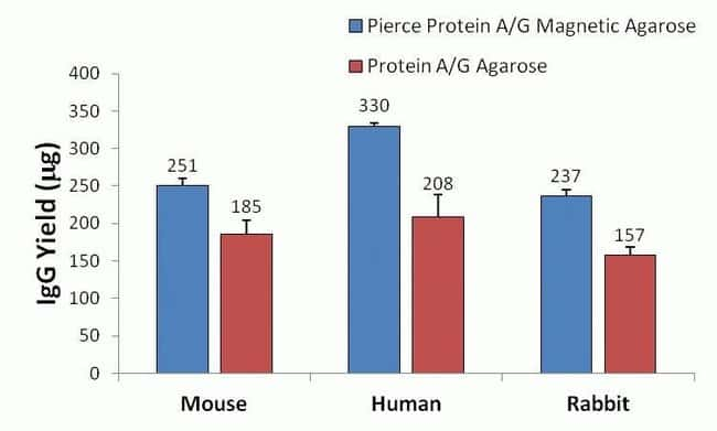 Magnetic vs. non-magnetic agarose purification