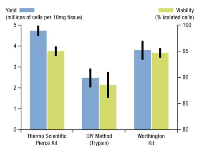 Cell yield and viability after cell isolation using the Neuron Isolation Kit