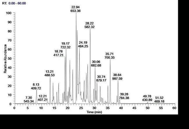 BSA Protein Digest Standard