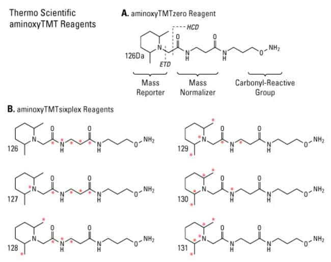 Chemical structures of the aminoxyTMTsixplex Label Reagents