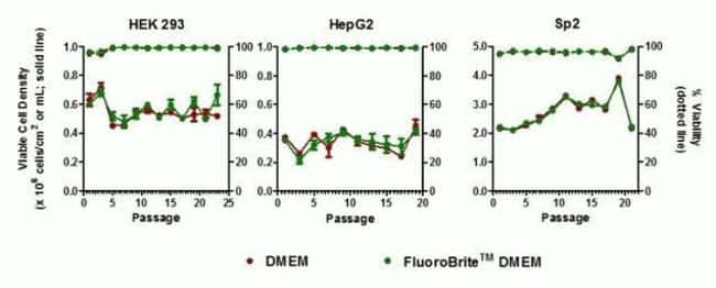 Cell lines cultured in FluoroBrite™ DMEM and standard DMEM display comparable long-term growth