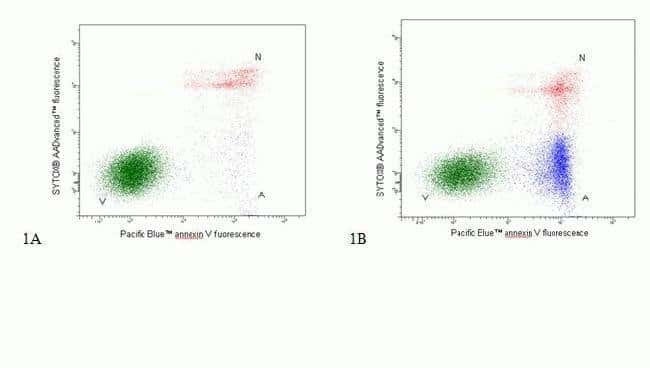 Flow Cytometry dual parameter dot plot  of Jurkat cells stained with Apoptosis Kit - Pacific Blue™ Annexin V/SYTOX® AADvanced™ *for flow cytometry* *50 tests*