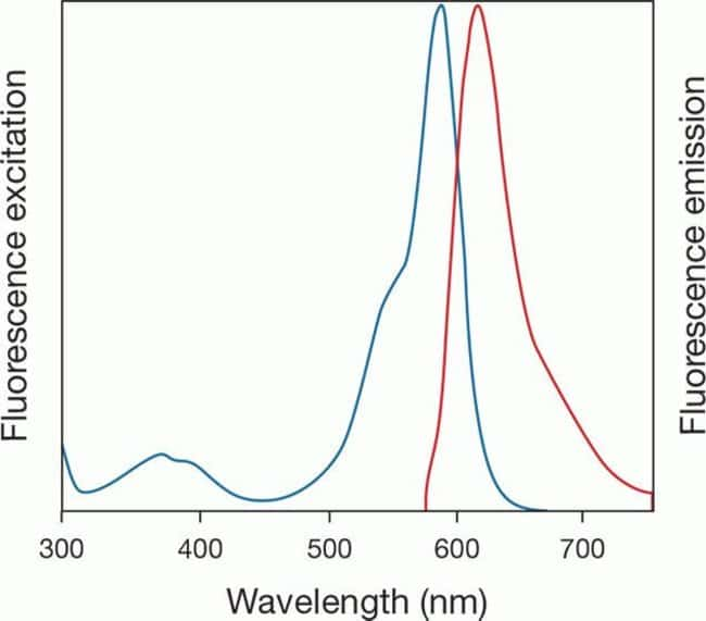 Excitation/emission spectra of AlexaFluor 350 picolyl azide (ex/em: 350/438)
