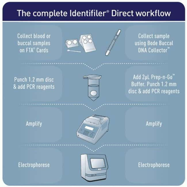 Identifiler Direct Workflow