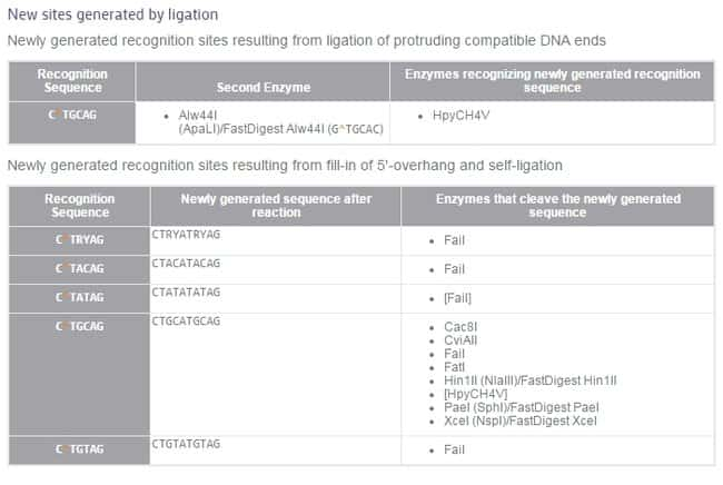 New sites generated by ligation