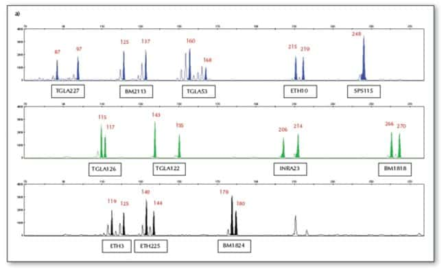 Representative results for the Bovine Genotypes Panel 1.2