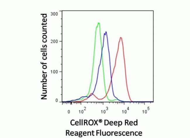 Cells treated with the oxidant TBHP (red) have increased staining with the CellROX® Red reagent compared to cells pretreated with the antioxidant N-acetylcysteine (blue) and control cells (green).