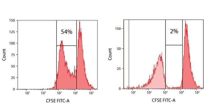 Suppressive capacity of isolated Treg cells.