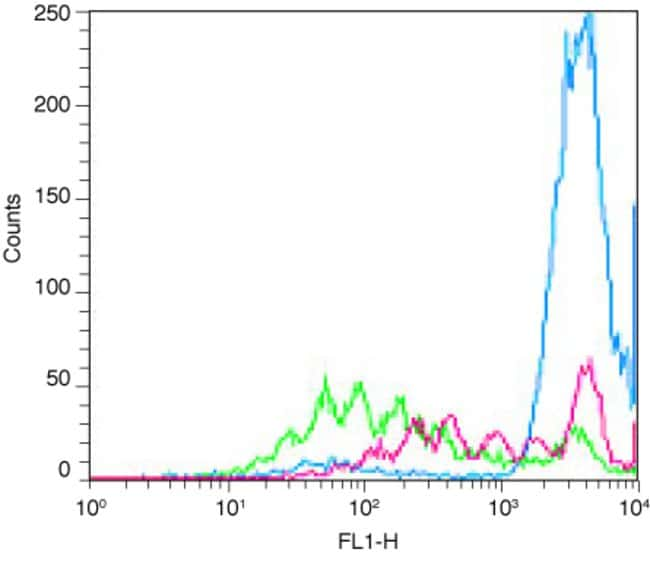 Flow cytometry histogram plot showing cell generation tracing using CellTrace™ Oregon Green® 488 carboxylic acid diacetate, succinimidyl ester.