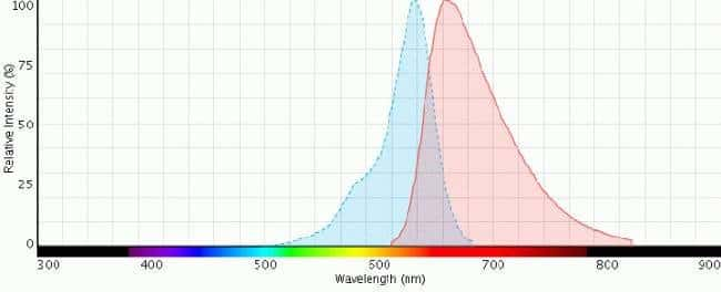 Excitation (blue curve) and emission (red curve) spectra for CellTracker™ Deep Red dye.