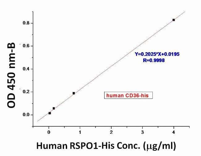 The activity of CD36 was determined from its ability to bind to biotinylated human RSPO1 using ELISA. The binding of immobilized human CD36 at 20 µg/ml (100 µl/well) to biotinylated human