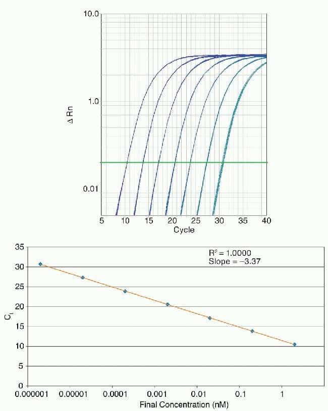 Amplification plot and standard curve from real-time PCR for a dilution series of a synthetic target amplified in 4 replicate reactions using the Applied Biosystems® 7900HT Fast Real-Time PCR System a