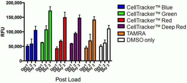 CellTracker™ dyes do not contribute to cytotoxicity