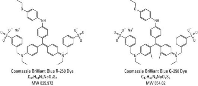 Chemical structures of coomassie brilliant blue dyes R-250 and G-250