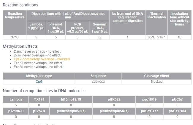 Enzyme properties
